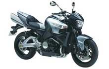 Suzuki  B-KING (GSX 1300 BK)
