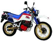 Honda  XL 600 LM/RM