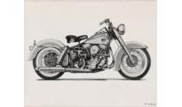 Harley-Davidson  DUO GLIDE (PANHEAD)