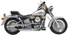 Harley-Davidson  FAT BOY (EVOLUTION)