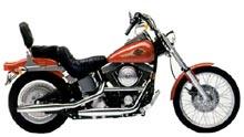Harley-Davidson  SOFTAIL CUSTOM (EVOLUTION)